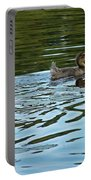 Young Male Garganey Portable Battery Charger