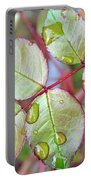 Young Rose Leaves Portable Battery Charger