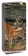 Young Whitetail Portable Battery Charger
