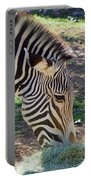Zebra At Lunch Portable Battery Charger