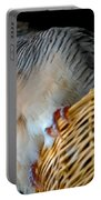 Zebra Dove From Above Portable Battery Charger