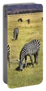 Zebra Grub Portable Battery Charger