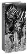 Zebra Hug 2 Portable Battery Charger