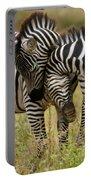 Zebra Hug Portable Battery Charger