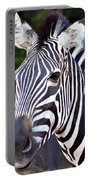Zebra Symmetry  Portable Battery Charger