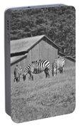 Zebras In San Simeon Portable Battery Charger