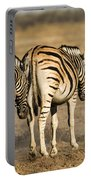Zebras Three Portable Battery Charger