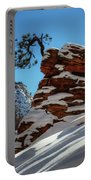Zion National Park In Winter Portable Battery Charger