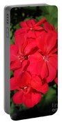 Zonal Geranium Named Candy Cherry Portable Battery Charger