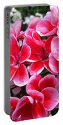 Zonal Geranium Named Candy Fantasy Kiss Portable Battery Charger