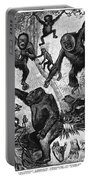 Zoology: Primates, 1883 Portable Battery Charger