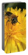 A Bee In A Dandelion Portable Battery Charger