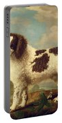 Brown And White Norfolk Or Water Spaniel Portable Battery Charger by George Stubbs