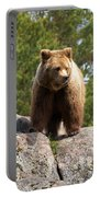 Brown Bear 4 Portable Battery Charger