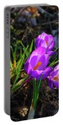 Crocus 0083b Portable Battery Charger