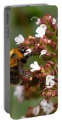 Cuckoo Bumblebee Portable Battery Charger