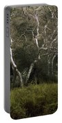 Dv Creek Trees Portable Battery Charger