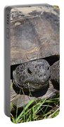Gopher Tortoise Close Up Portable Battery Charger