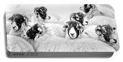 In Winters Grip Portable Battery Charger