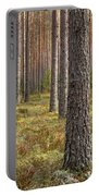 Pine Forest Portable Battery Charger