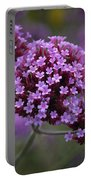 Purpletop Vervain Portable Battery Charger