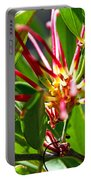 Red Spider Flower Close Up Portable Battery Charger
