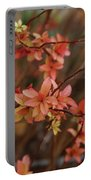 Spirea 1280 Portable Battery Charger
