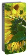 Sunflower 7249a Portable Battery Charger