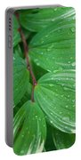 Tears Of Solomons Portable Battery Charger