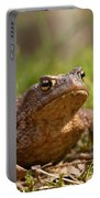 The Common Toad 3 Portable Battery Charger