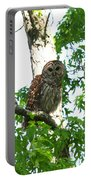 0298-001 - Barred Owl Portable Battery Charger
