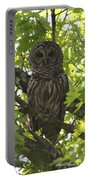 0313-010 - Barred Owl Portable Battery Charger