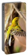 0818 - Prairie Warbler Portable Battery Charger