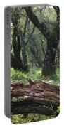 1b6338 Oak Forest On Sonoma Mountain Ca Portable Battery Charger