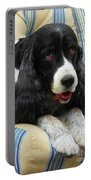 #940 D1031 Farmer Browns Springer Spaniel Portable Battery Charger