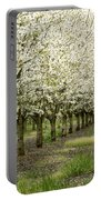 A Flowering Cherry Orchard Portable Battery Charger