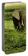 African Elephant In Swamp Portable Battery Charger