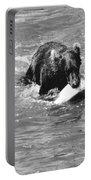 Alaska: Brown Bear Portable Battery Charger