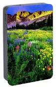 Albion Basin Portable Battery Charger