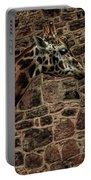 Amazing Optical Illusion - Can You Find The Giraffe Portable Battery Charger