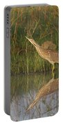 American Bittern Close To Shore Portable Battery Charger