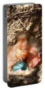 American Robin Nestlings Portable Battery Charger