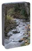 An Autumn Stream Portable Battery Charger