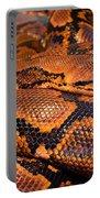 Anaconda Portable Battery Charger