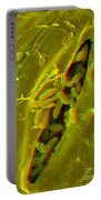 Anaglyph Of Infected Lettuce Leaf Portable Battery Charger