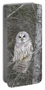 Angel Owl Portable Battery Charger