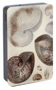Aquatic Animals - Sea - Shells - Composition - Alien - Wall Art  - Interior Decoration  Portable Battery Charger