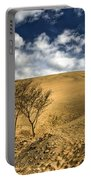 Argentina Desert Landscape Portable Battery Charger