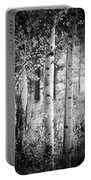 Aspen Trees In Black And White Portable Battery Charger