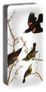 Audubon: Blackbird, (1827) Portable Battery Charger